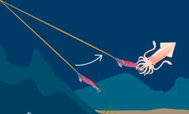 イカのアタリの取り方(ラインの変化)